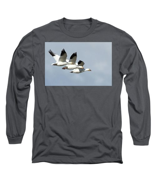 Triple Play Long Sleeve T-Shirt
