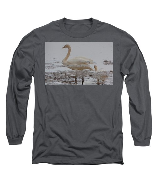 Trumpeter Swan Reflection Long Sleeve T-Shirt by Karen Molenaar Terrell