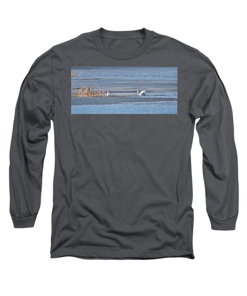 Long Sleeve T-Shirt featuring the photograph Trumpeter Swans 0933 by Michael Peychich