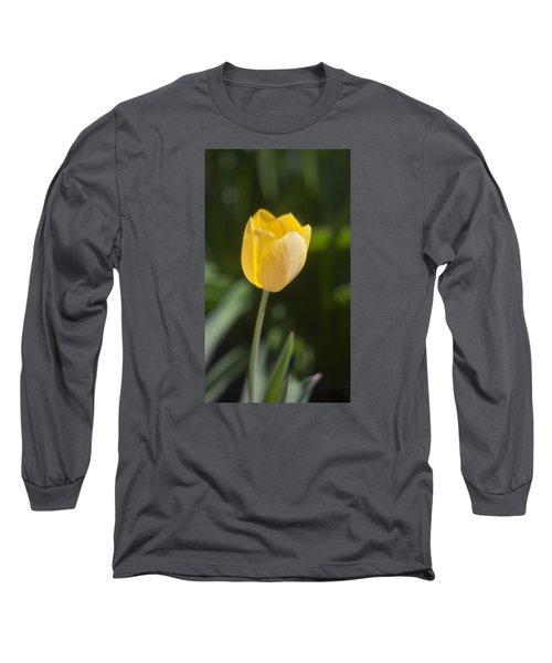 Tulip Portrait Long Sleeve T-Shirt by Morris  McClung