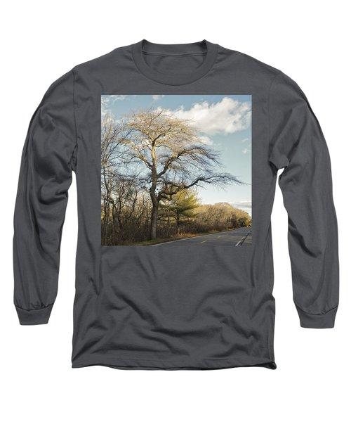 Tupelo Tree Long Sleeve T-Shirt
