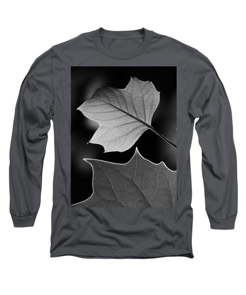 Tulip Tree Leaves Competing For Light Long Sleeve T-Shirt by Jane Ford