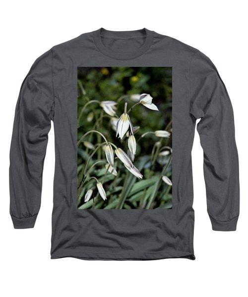 Tulipa Turkestanica Long Sleeve T-Shirt