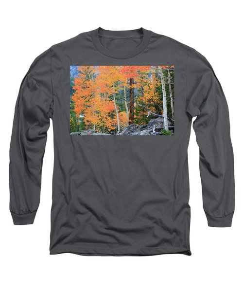 Long Sleeve T-Shirt featuring the photograph Twisted Pine by David Chandler