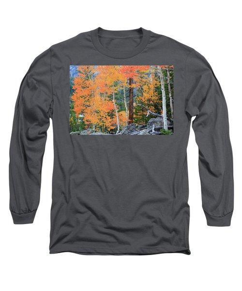 Twisted Pine Long Sleeve T-Shirt