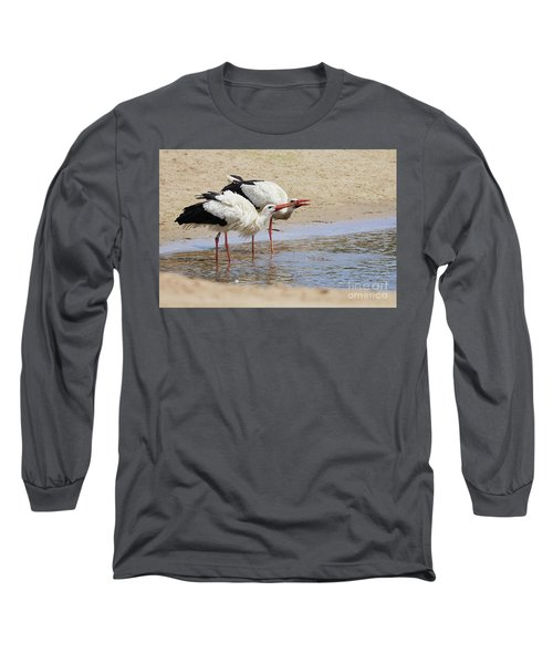 Two Drinking White Storks Long Sleeve T-Shirt