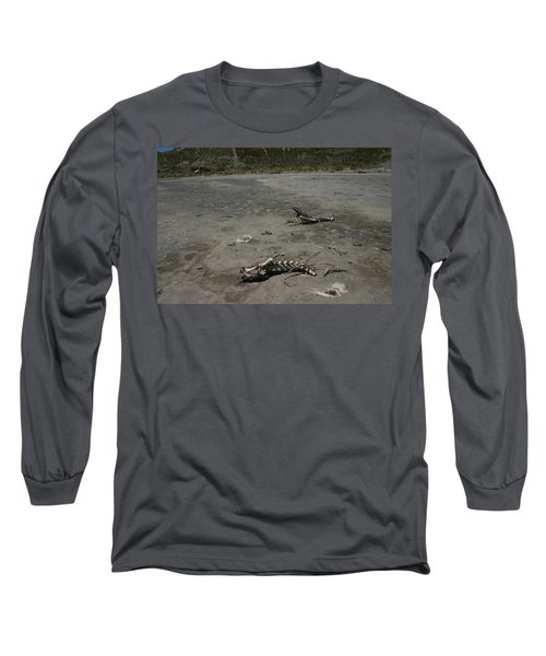 Two Or 2 Halves Of 1 Long Sleeve T-Shirt