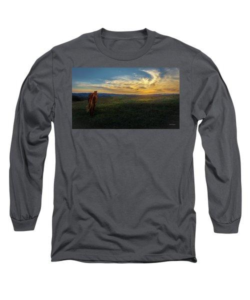 Under A Bright Evening Sky Long Sleeve T-Shirt