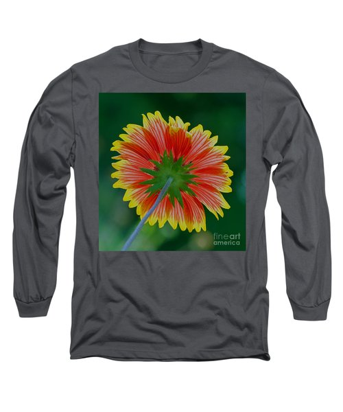 Long Sleeve T-Shirt featuring the photograph Under Your Spell by Larry Nieland