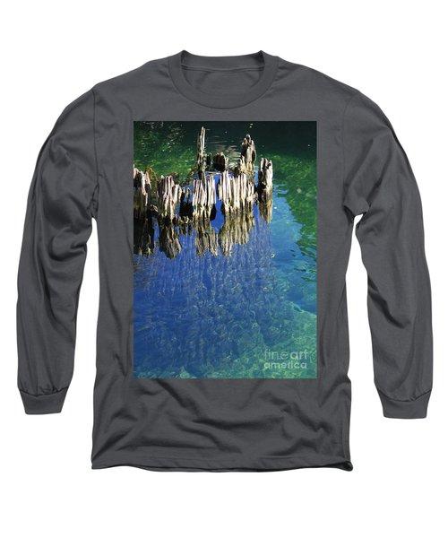 Underwater Cypress Stump Long Sleeve T-Shirt