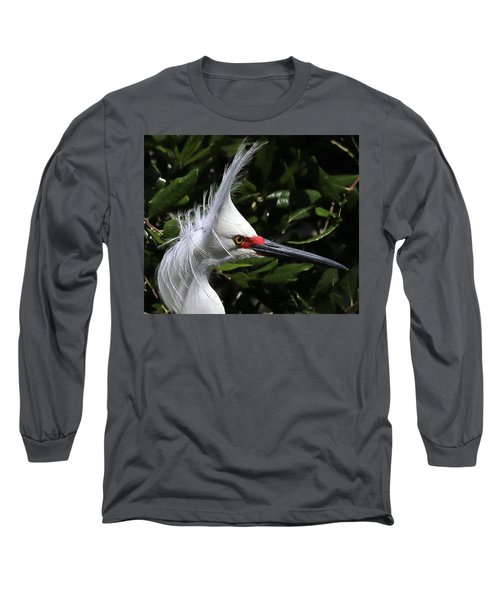 Up From A Nap Long Sleeve T-Shirt by Lamarre Labadie
