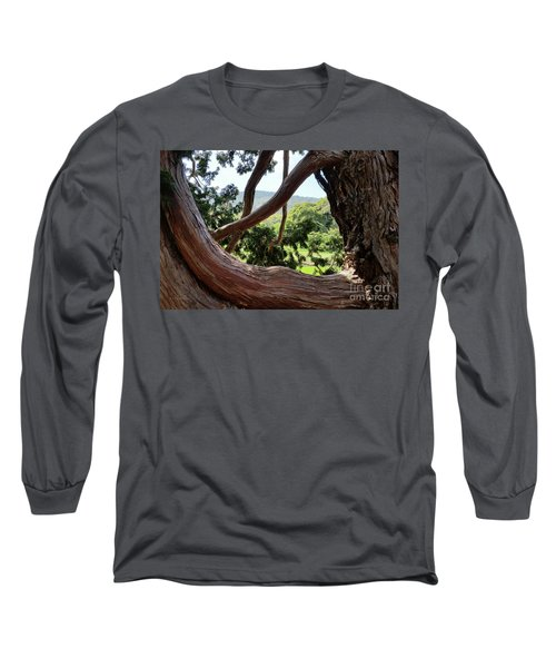 View Through The Tree Long Sleeve T-Shirt by Carol Lynn Coronios