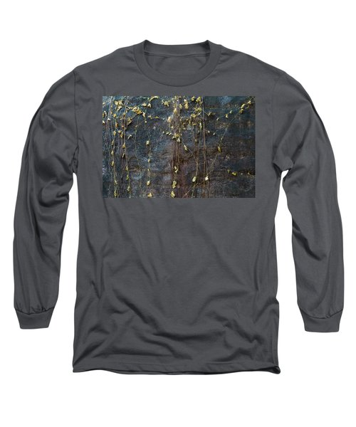Long Sleeve T-Shirt featuring the photograph Vines On Rock, Bhimbetka, 2016 by Hitendra SINKAR