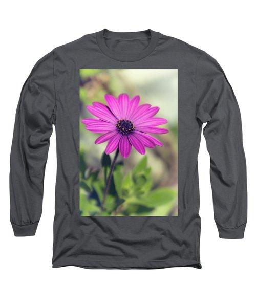 Long Sleeve T-Shirt featuring the photograph Vintage Purple Daisy  by Saija Lehtonen