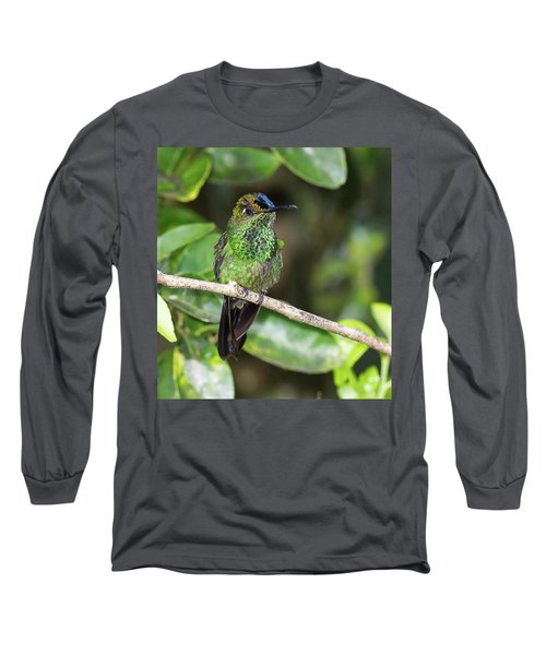 Violet-fronted Brilliiant Long Sleeve T-Shirt