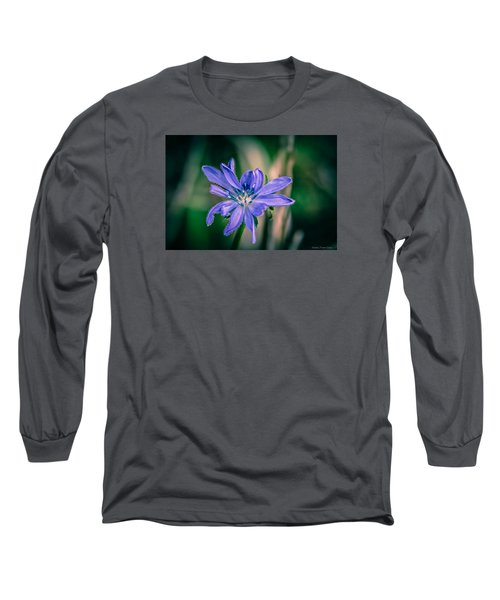 Violet Long Sleeve T-Shirt by Michaela Preston