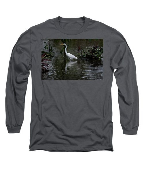 Wading Great Egret Long Sleeve T-Shirt by James David Phenicie