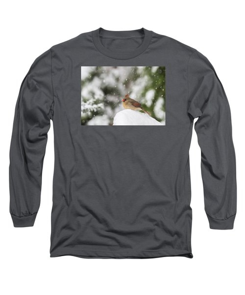 Waiting Out The Snow Long Sleeve T-Shirt