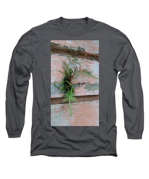 Wall Fern Long Sleeve T-Shirt