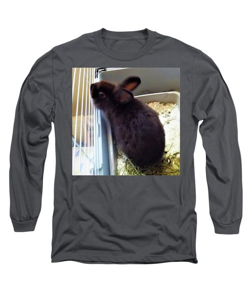 Long Sleeve T-Shirt featuring the photograph Warm And Soft by Denise Fulmer