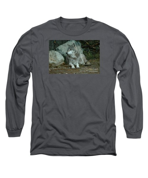Watchful Wolf Long Sleeve T-Shirt