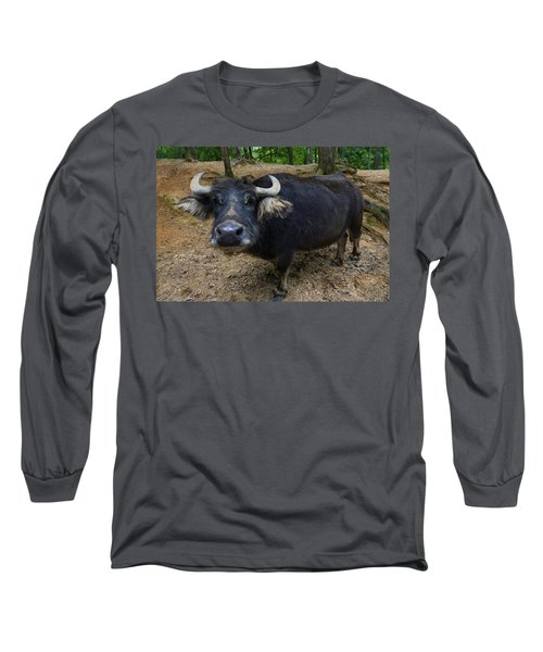 Water Buffalo On Dry Land Long Sleeve T-Shirt by Chris Flees