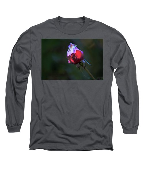 Water Droplets On The Rose Long Sleeve T-Shirt