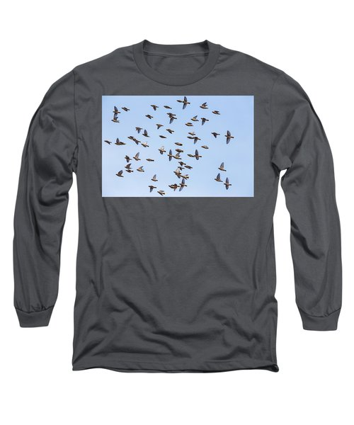 Long Sleeve T-Shirt featuring the photograph Waxwings by Mircea Costina Photography