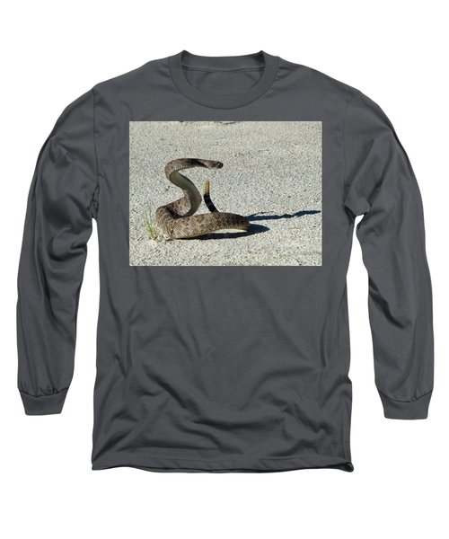 Western Diamondback Rattlesnake Long Sleeve T-Shirt by Skeeze
