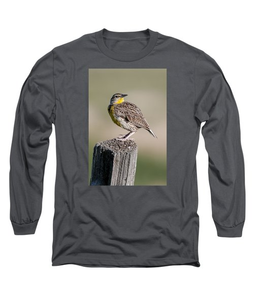 Long Sleeve T-Shirt featuring the photograph Western Meadowlark by Gary Lengyel