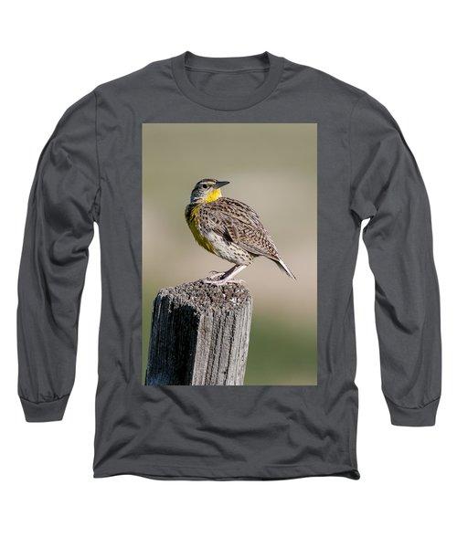 Western Meadowlark Long Sleeve T-Shirt