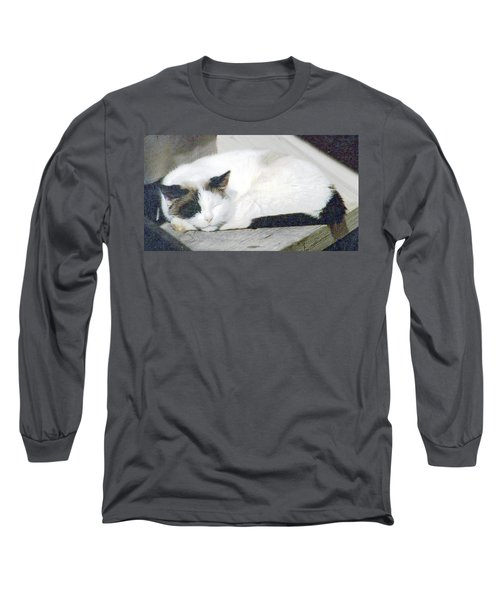 What Do Cats Dream Of #2 Long Sleeve T-Shirt