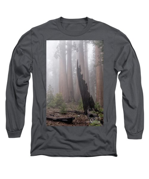 Long Sleeve T-Shirt featuring the photograph What Lurks In The Forest by Peggy Hughes