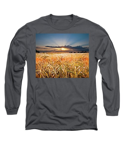 Wheat At Sunset Long Sleeve T-Shirt