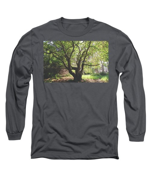 When You Need Shelter Long Sleeve T-Shirt by Laurie Search