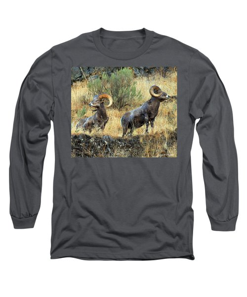 Where Did They Go? Long Sleeve T-Shirt by Steve Warnstaff