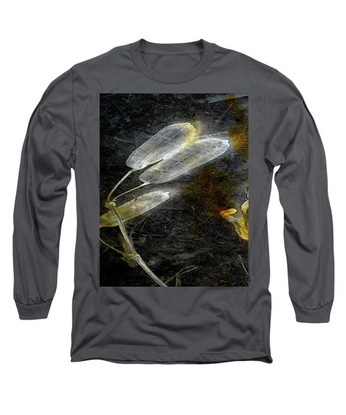Where There Had Been Light II Long Sleeve T-Shirt