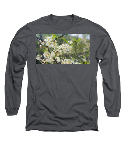 White Blossoms On Fruit Tree Long Sleeve T-Shirt