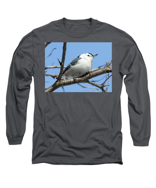 White-breasted Nuthatch Perched Long Sleeve T-Shirt