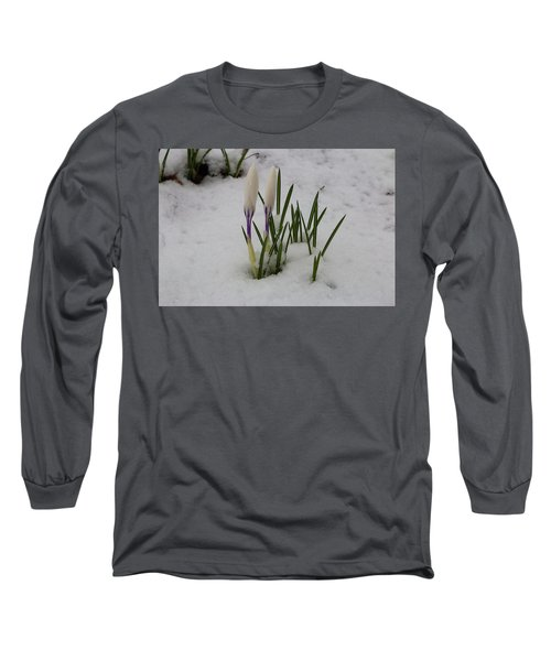 White Crocus In Snow Long Sleeve T-Shirt