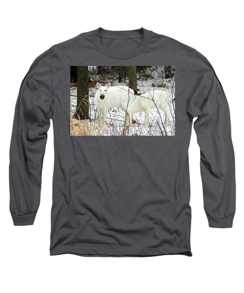 White Deer With Squash 3 Long Sleeve T-Shirt by Brook Burling