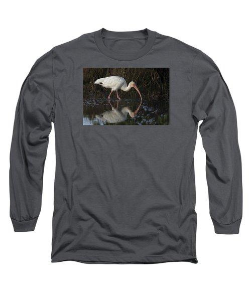 White Ibis Feeding In Morning Light Long Sleeve T-Shirt