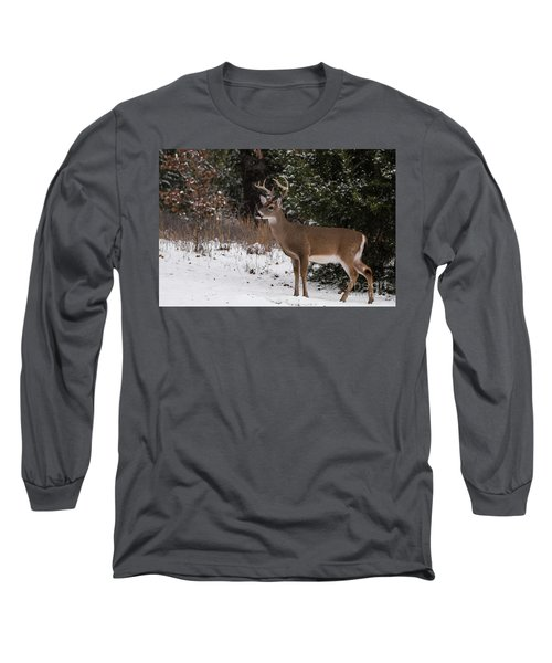 White-tailed Deer - 8904 Long Sleeve T-Shirt