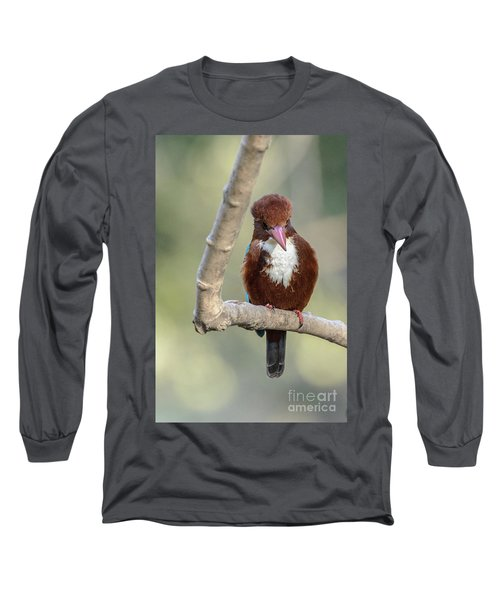 White-throated Kingfisher 01 Long Sleeve T-Shirt