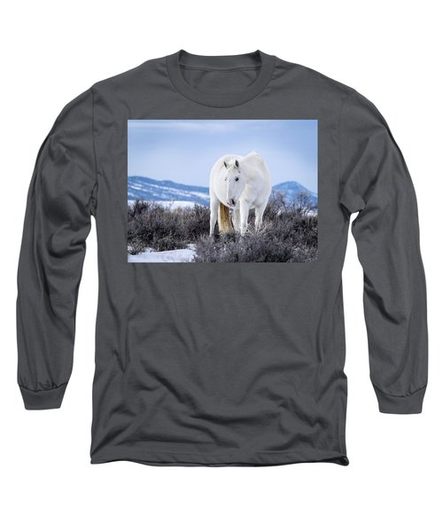 White Wild Horse Mystic Of Sand Wash Basin Long Sleeve T-Shirt