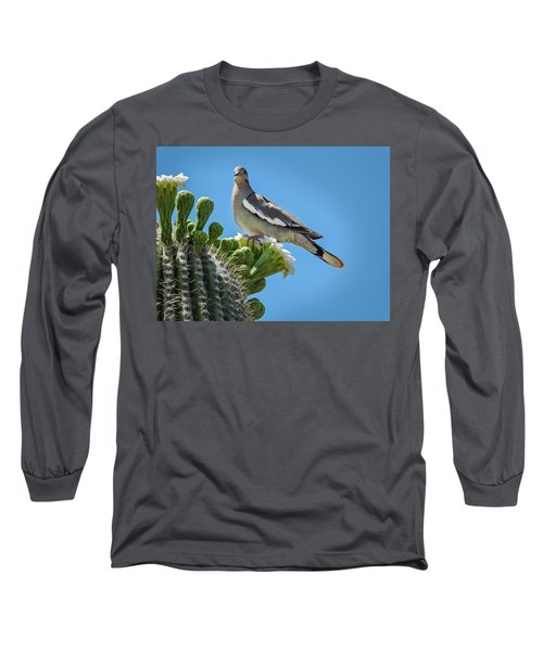 White Winged Dove On Cactus Flower Long Sleeve T-Shirt by Penny Lisowski