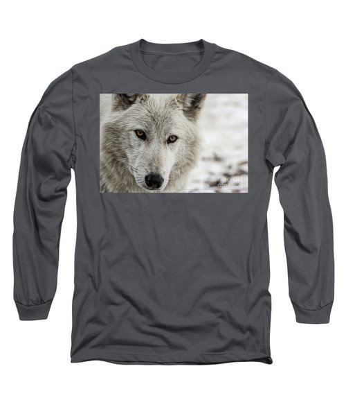 White Wolf II Long Sleeve T-Shirt