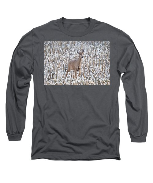 Whitetail In Frosted Corn 537 Long Sleeve T-Shirt