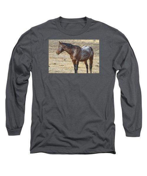 Wild Appaloosa Mustang Stallion Long Sleeve T-Shirt