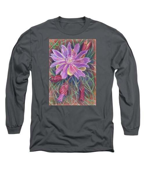 Long Sleeve T-Shirt featuring the drawing Wild Bitterroot Flower by Dawn Senior-Trask